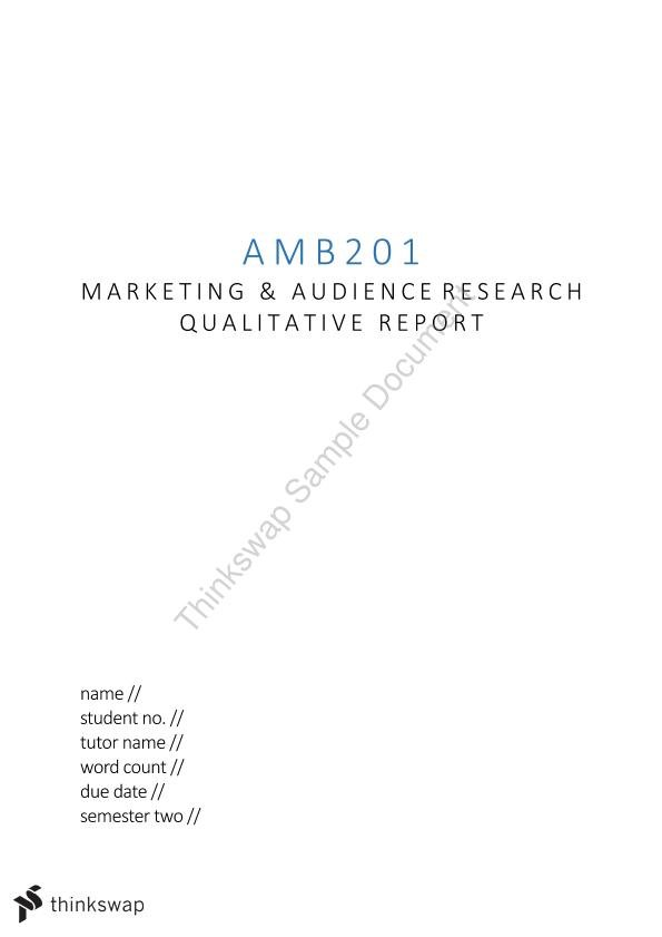 Marketing and Audience Research Qualitative Report