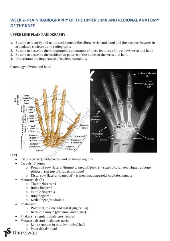 Week 2 Summary Notes - Plain Radiography of the upper limb and regional anatomy of the knee - Page 1