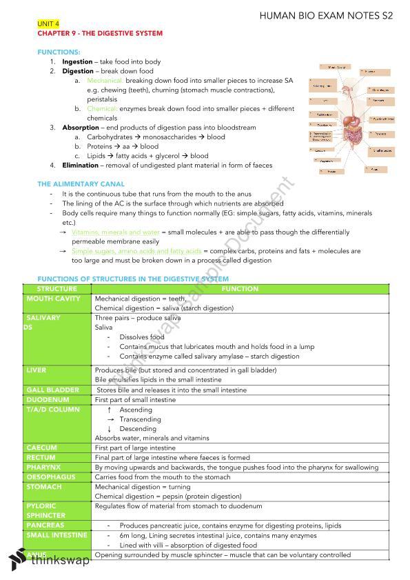 Human Biology Year 11 Semester 2 (Chapter 13-23) Notes