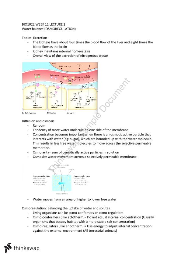 BIO1022 Osmoregulation
