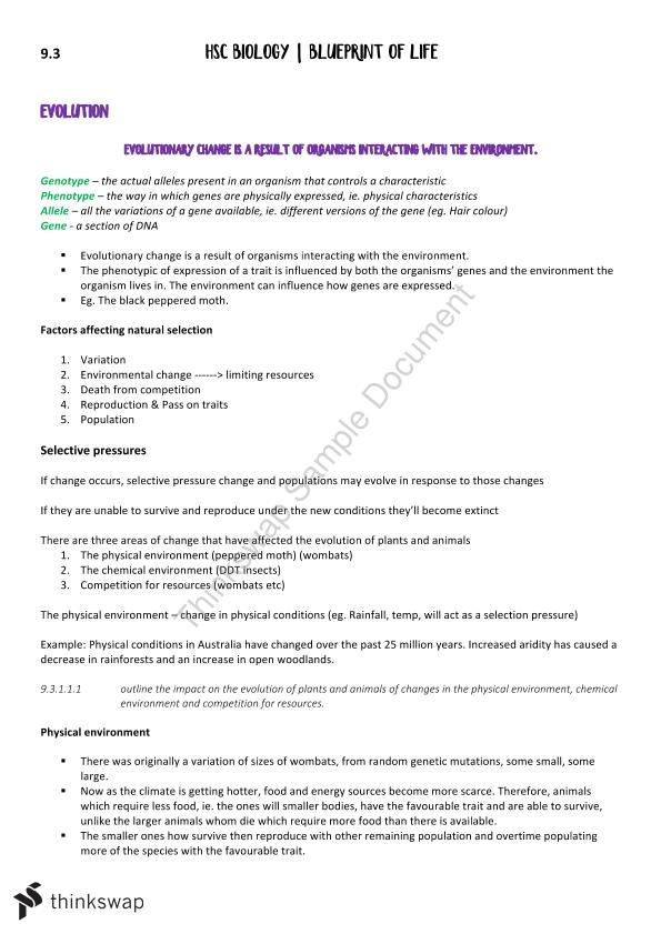Biology 93 blueprint of life study notes year 12 hsc biology biology 93 blueprint of life study notes malvernweather Images