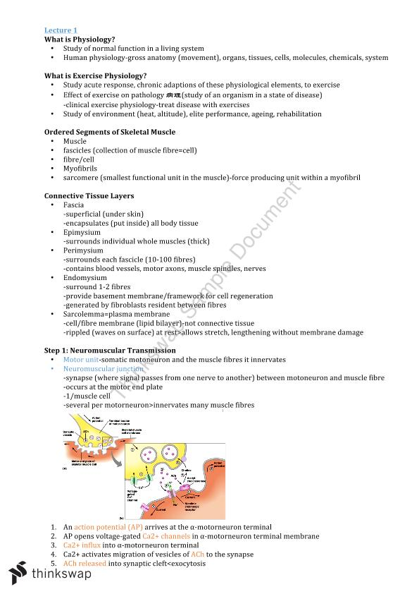 Complete Notes For Hse201 Hse201 Exercise Physiology Thinkswap