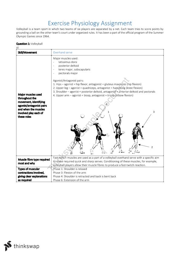 Exercise Physiology Assignment | Year 11 SACE - Physical Education