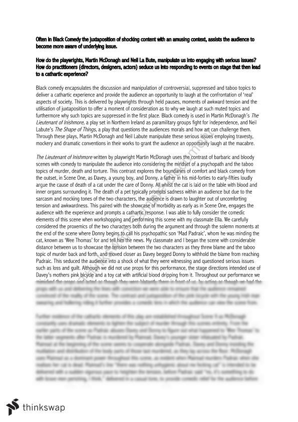 Thesis Statements For Essays Black Comedy Essay Using Neighbourhood Watch And The Lieutenant Of  Inishmore The Kite Runner Essay Thesis also Argumentative Essay Thesis Example Black Comedy Essay Using Neighbourhood Watch And The Lieutenant Of  High School Years Essay