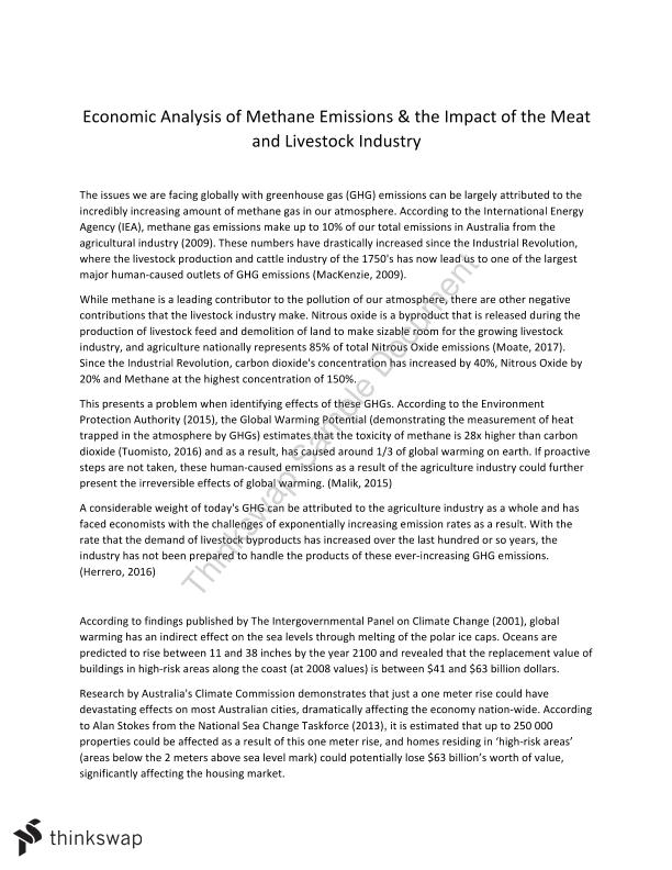 BSB113 Economics Essay - Methane Emissions and Livestock