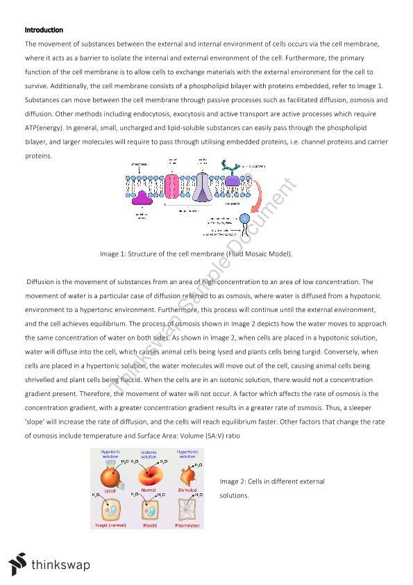 Biology Sage 2 Osmosis Practical | Year 11 SACE - Biology | Thinkswap