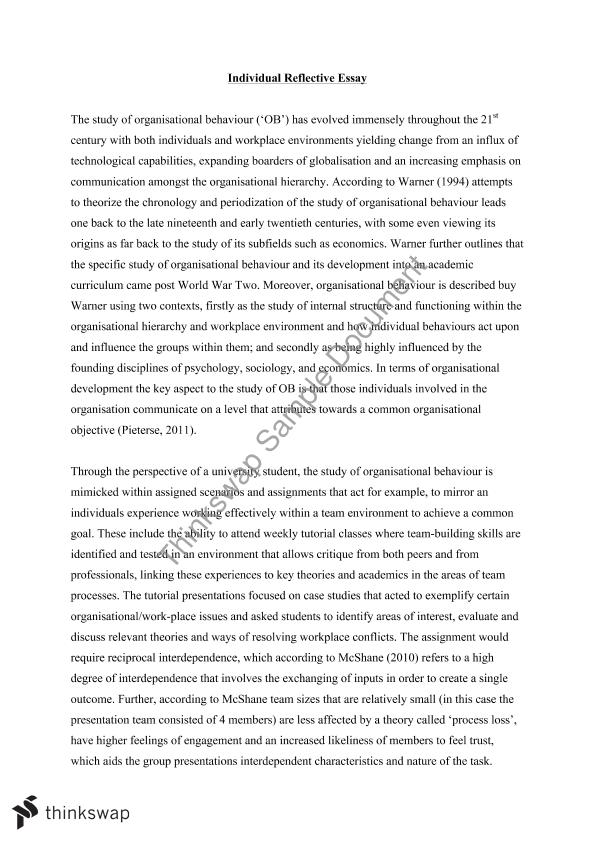 organizational behaviour essay
