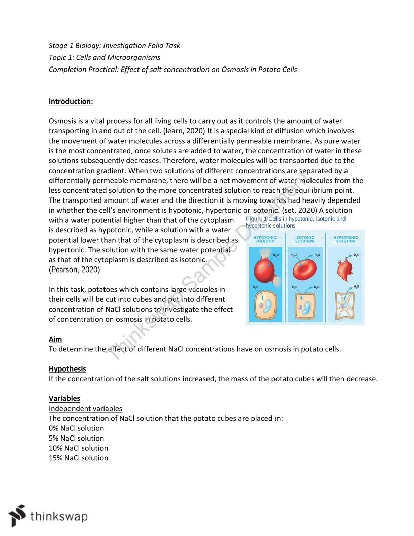 Osmosis practical report
