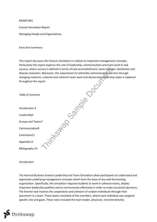 everest simulation reflection essay