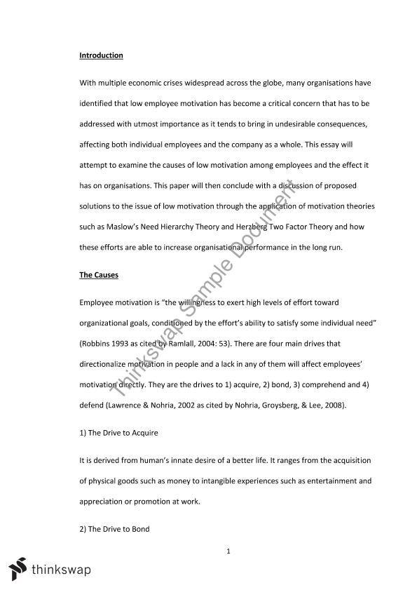 Low Employee Motivation, Assignment Essay | MGTS1601 ...