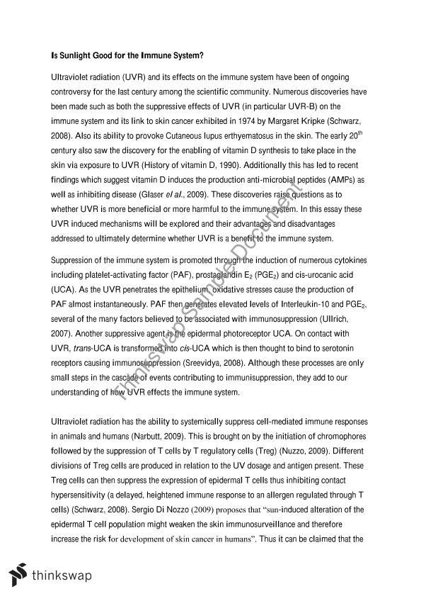Immune system essay