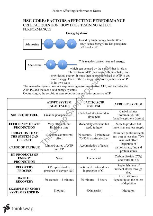 Essay assessment information