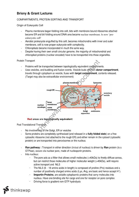 Biochemistry II: Molecular & Cellular Biology Complete Lecture Notes