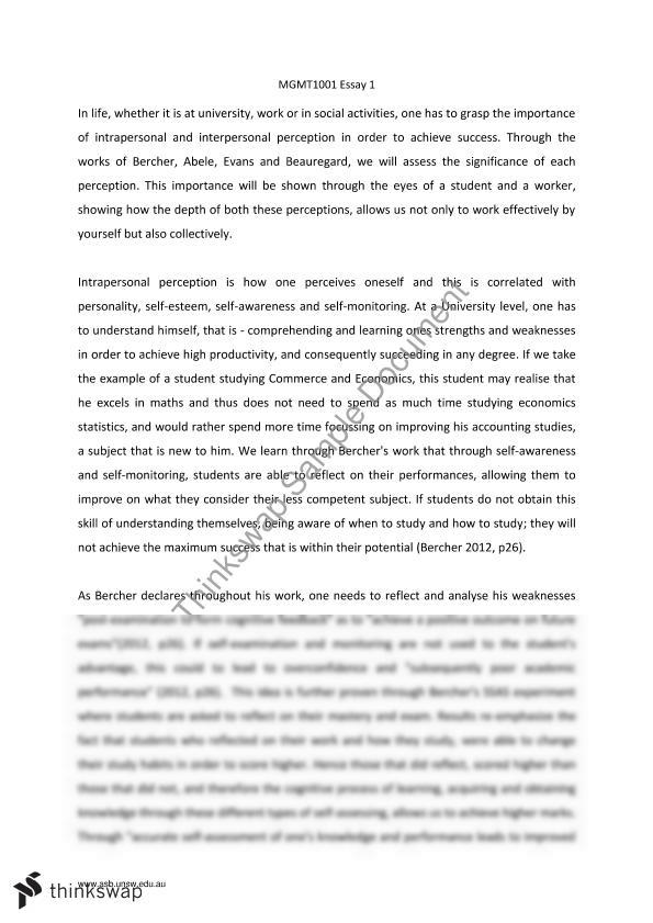 mgmt1001 essay unsw