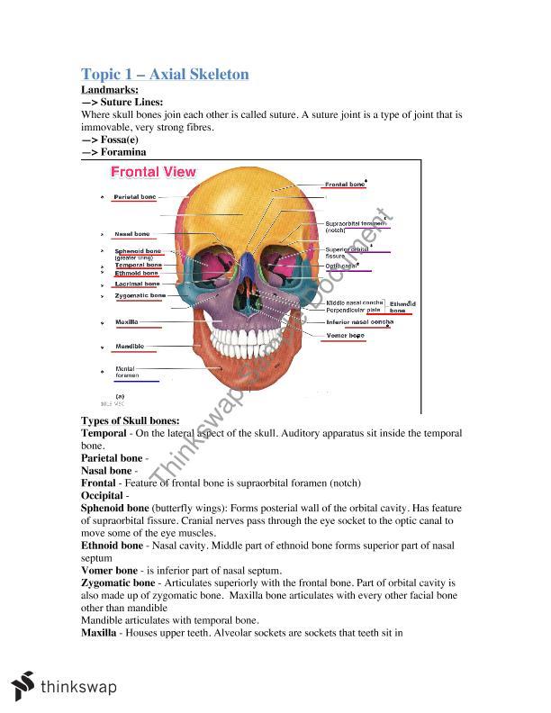 Anatomy & Physiology Systems I Full Notes | 1016MSC