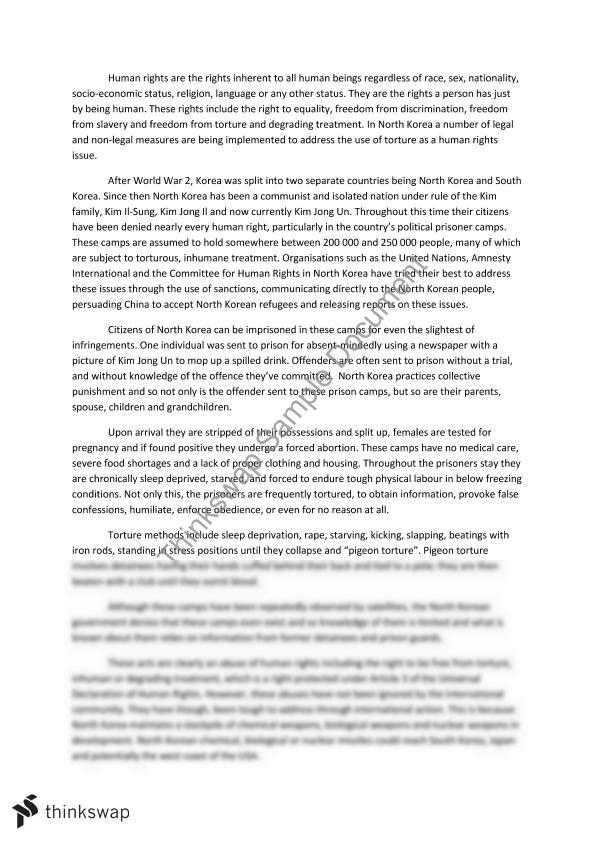 North korea essay