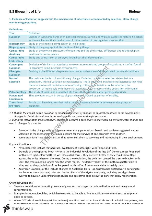 93 blueprint of life complete summary notes year 12 hsc biology 93 blueprint of life complete summary notes malvernweather Image collections