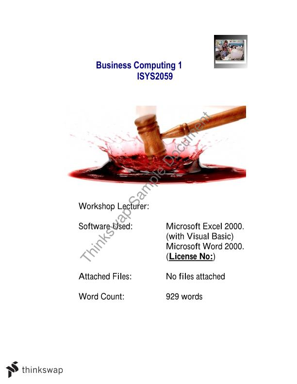 Hammerwine Business Computing Analysis