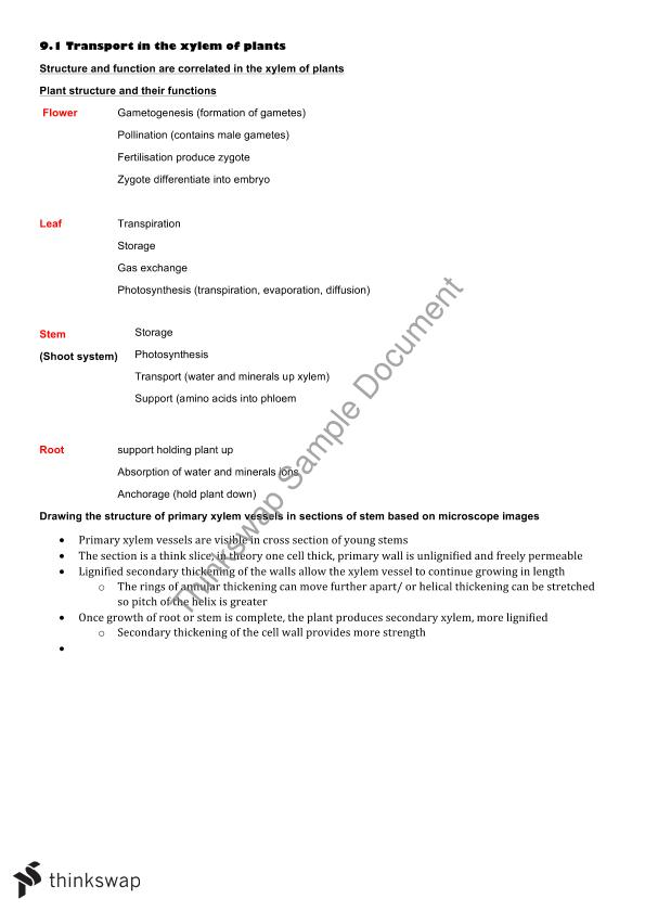 Biology Notes on Plant Physiology | Year 12 VCE - Biology | Thinkswap