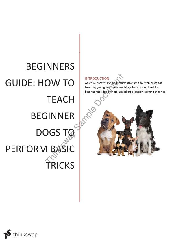 Dog Training Manual Task Project  Year  Wace  Psychology  Thinkswap