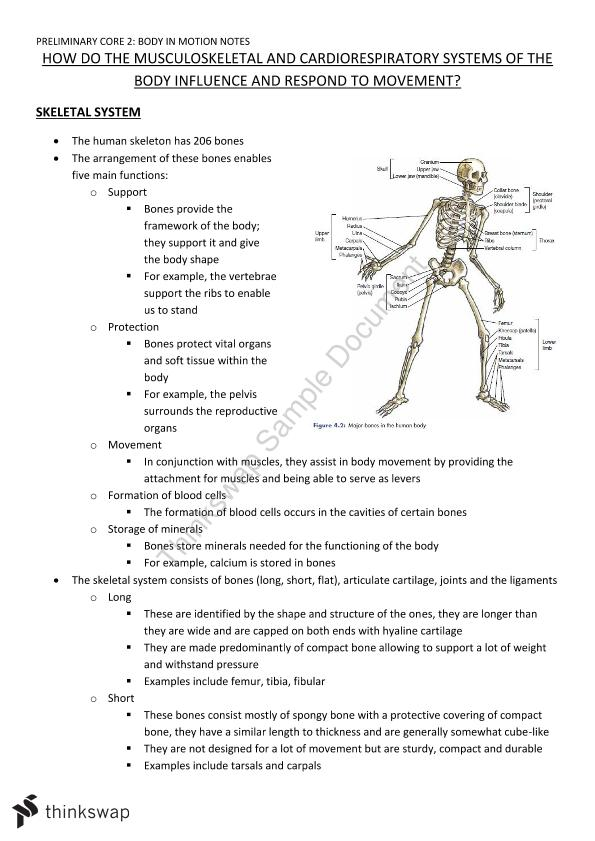 Body In Motion Syllabus Notes