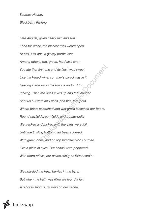 blackberry picking poem essay