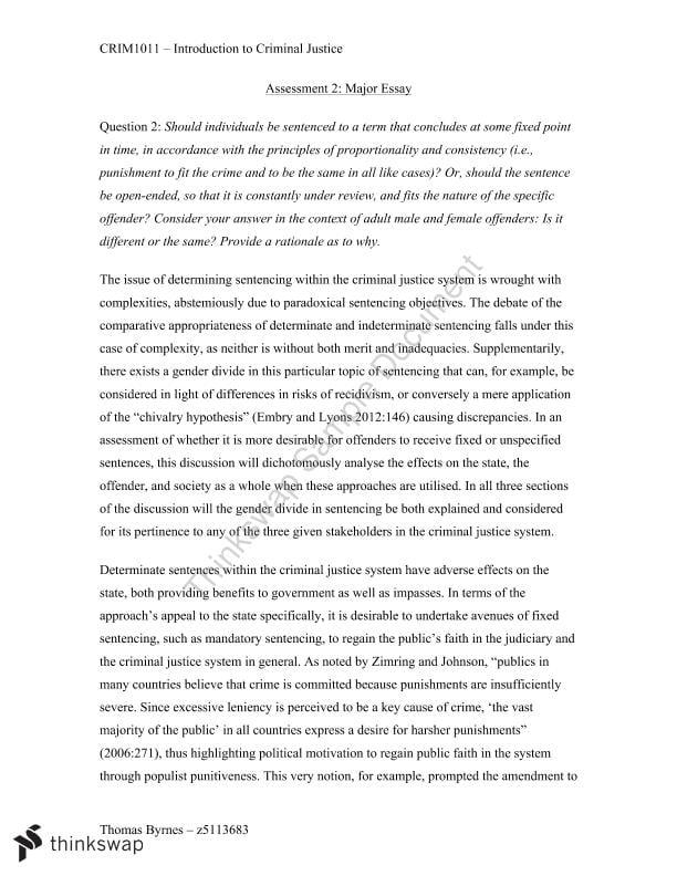 Essay on criminal justice