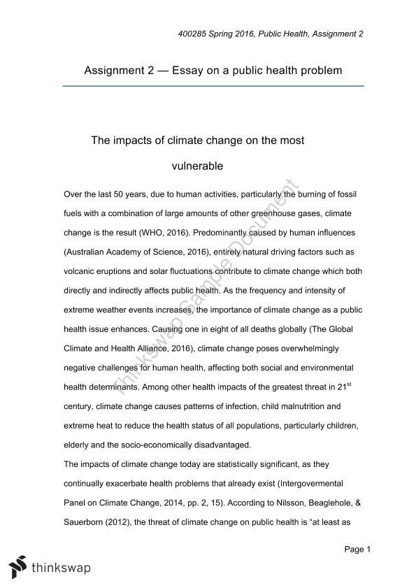 Public health essay