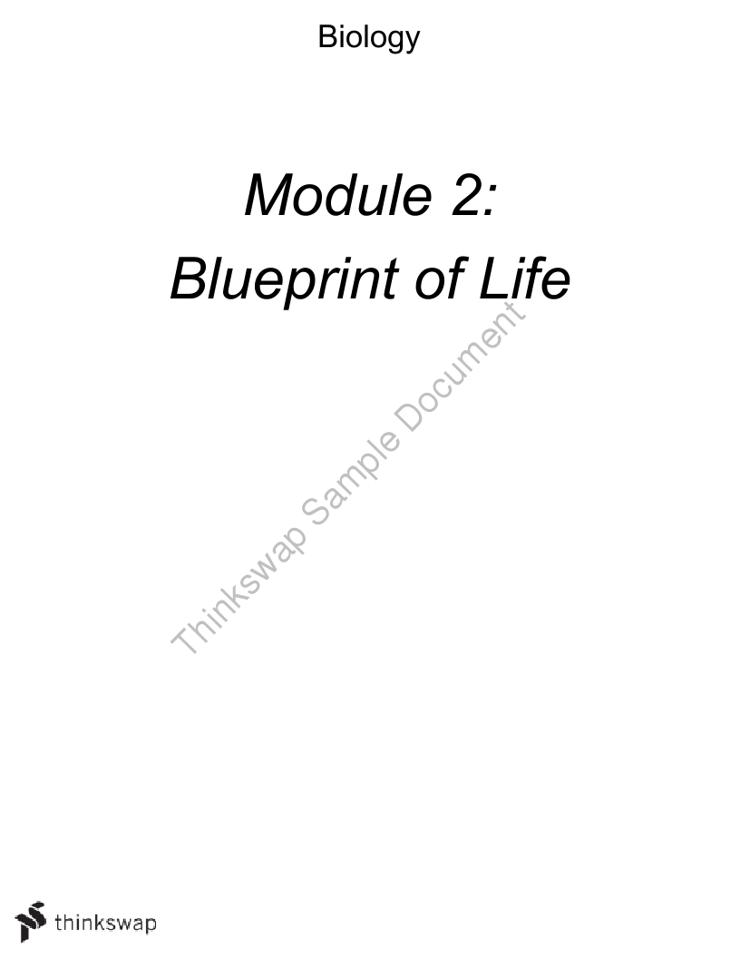 Hsc biology blueprint of life notes year 12 hsc biology thinkswap hsc biology blueprint of life notes malvernweather Image collections