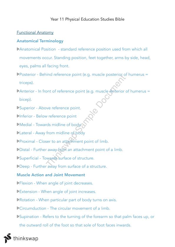 Complete PE Studies Glossary and Relevant Example Notes | Year 11 ...