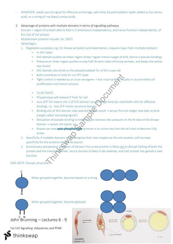 Biochemistry 2014 Semester 2 Lecture Notes | BIOCHEM3001 - Cancer