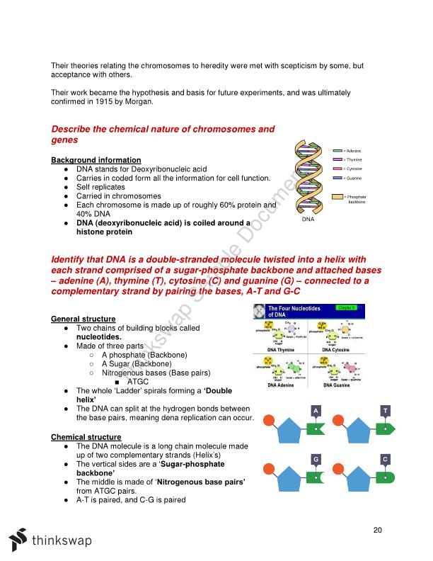 Blueprint of life biology hsc notes year 12 hsc biology blueprint of life biology hsc notes malvernweather Images