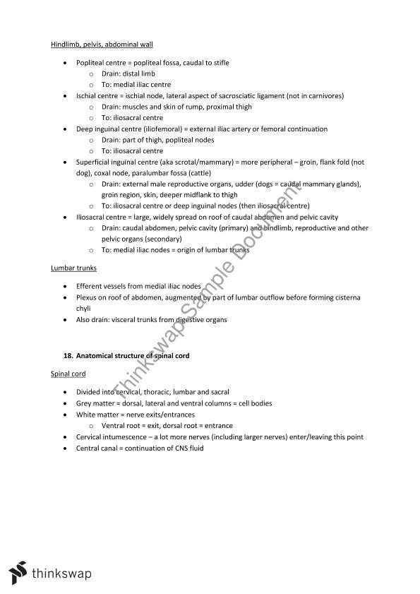 Veterinary Anatomy of the Dog Summary notes | VSC224 - Veterinary ...