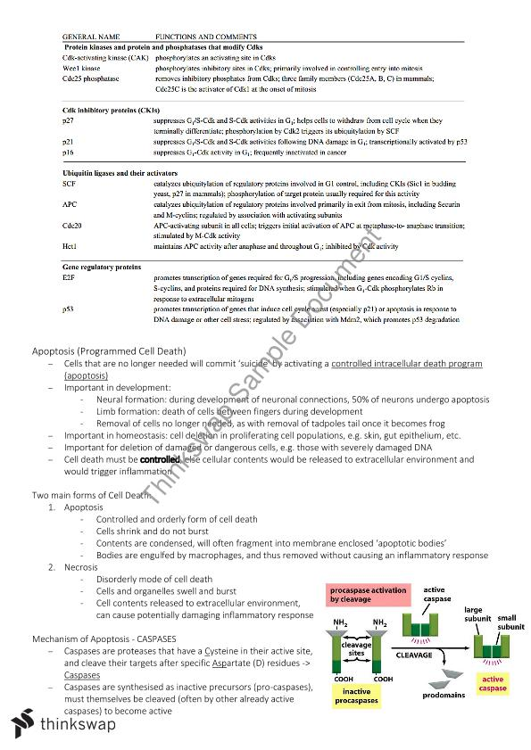 introduction to biochemistry notes pdf