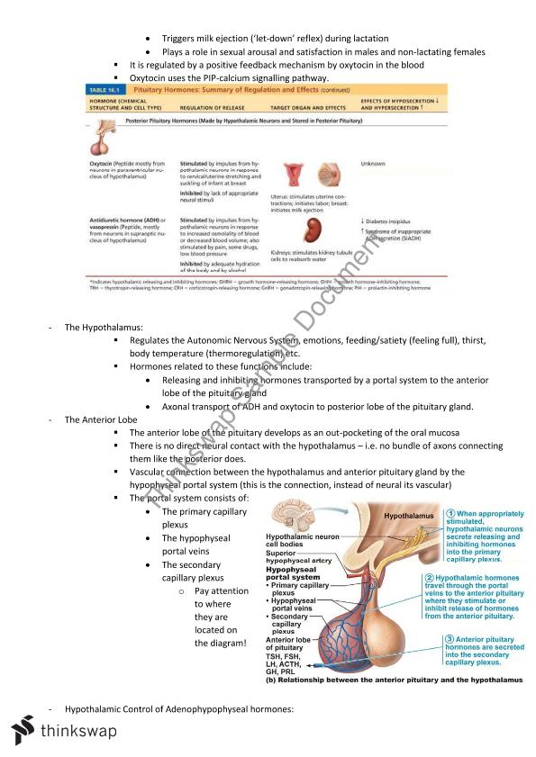 Anatomy & Physiology Study Guide with Review Questions