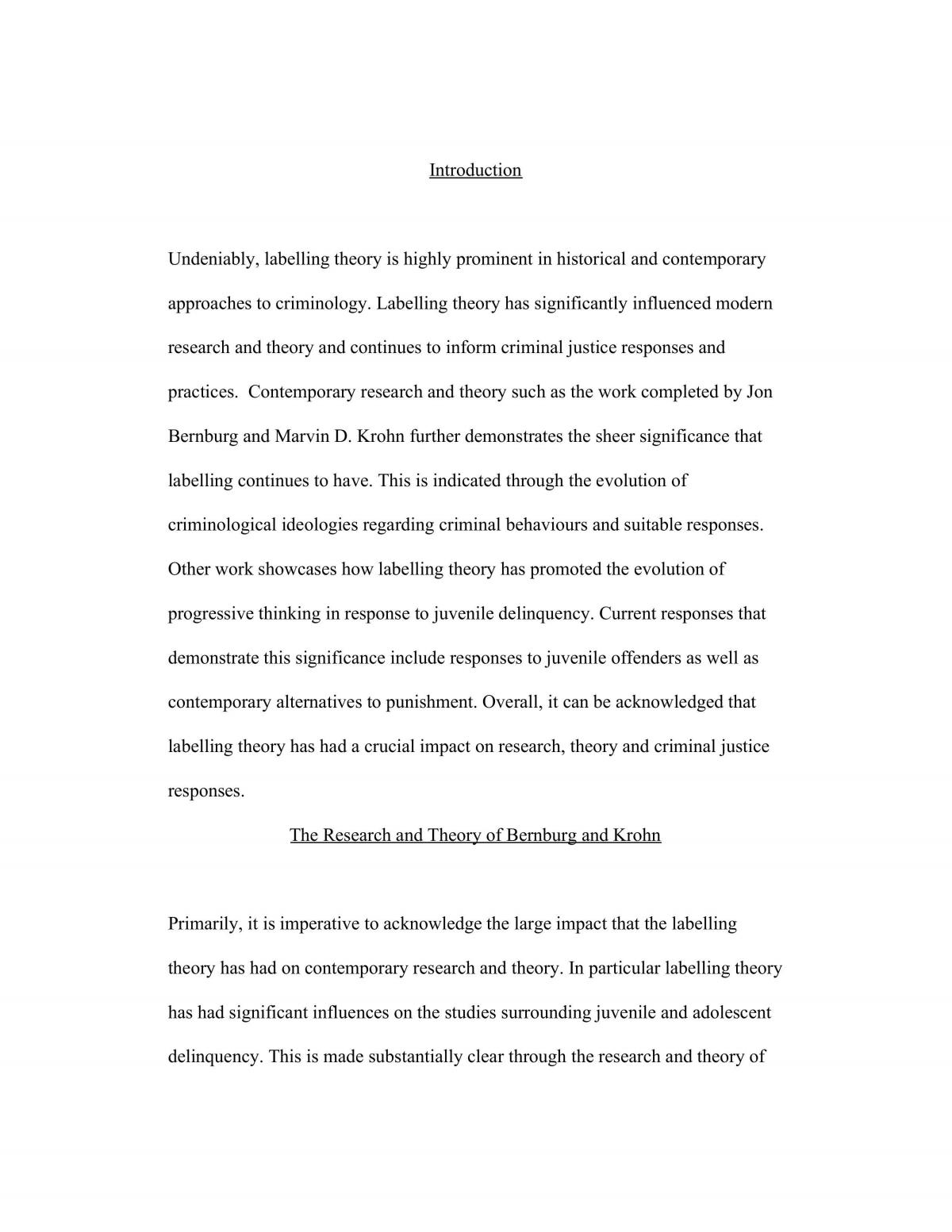 Criminological Perspectives Essay - Page 1